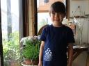 泉屋染物店(藍染め Tシャツ(子供用))